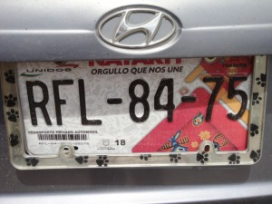 Nayarit license plate
