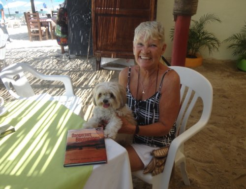 November 2015 – Barbara McKinley Morrison