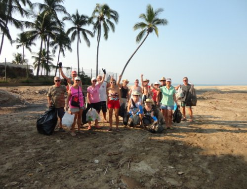 Beach Clean-Up for March, 2018
